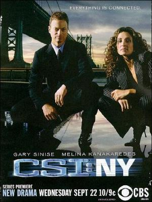 CSI: Nueva York (Serie de TV)