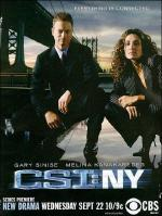 CSI: New York (TV Series)