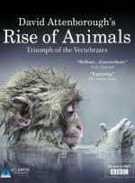 Rise of Animals: Triumph of the Vertebrates (Miniserie de TV)