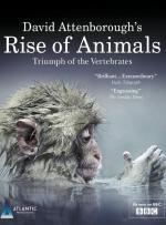 Rise of Animals: Triumph of the Vertebrates (TV Miniseries)