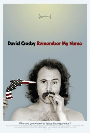 Ver David Crosby: Remember My Name Pelicula completa online gratis on Repelis