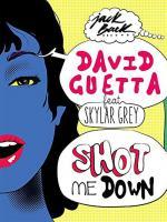 David Guetta ft. Skylar Grey: Shot Me Down (Music Video)