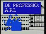 De professió: A.P.I. (Serie de TV)