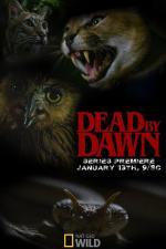 Dead by Dawn (Serie de TV)