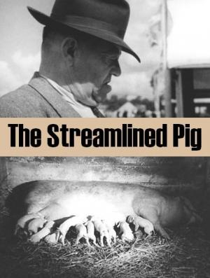 The Streamlined Pig (S)