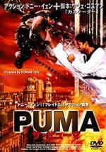 Puma, el corazón del guerrero