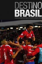Destino Brasil 2014 (Serie de TV)