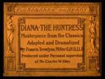 Diana the Huntress (C)