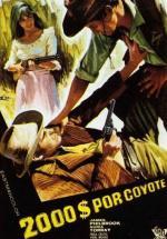 Dos mil dólares por Coyote