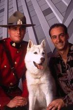 Due South (Serie de TV)