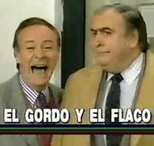 El gordo y el flaco (Serie de TV)