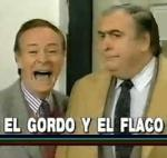 El gordo y el flaco (TV Series)