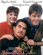 El padre Gallo (Serie de TV)
