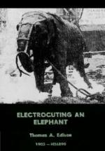 Ejecución de un elefante (C)