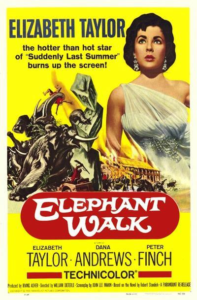 elephant_walk-331113467-large.jpg