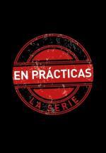 En prácticas (Serie de TV)