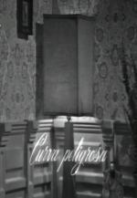 Curva peligrosa (TV)