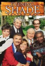 Evening Shade (TV Series)
