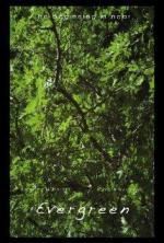 Evergreen (C)