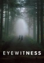 Testigo (Eyewitness) (Serie de TV)