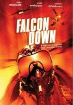 Proyecto Falcon