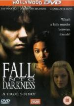 Fall Into Darkness (TV)