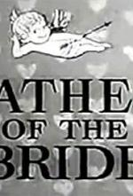 Father of the Bride (TV Series)