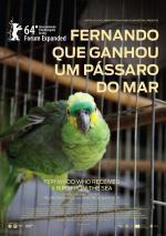 Fernando que Ganhou um Pássaro do Mar (C)
