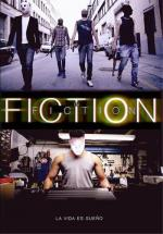 Fiction in Fiction (C)