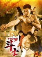 Fighter (King of the Boxer)