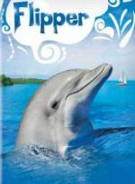 Flipper (TV Series)
