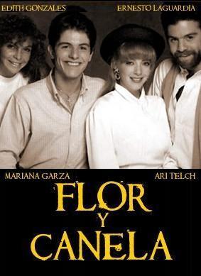 Flor y canela (Serie de TV)