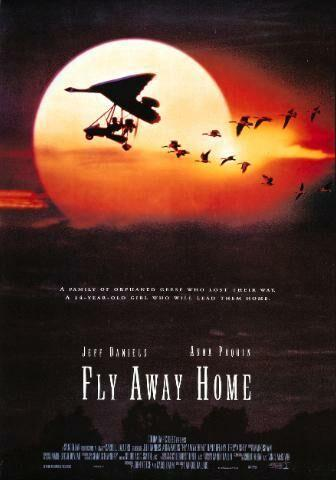 Volando libre [1996] [1080p] [Latino-Ingles] [GD]