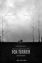 Fox-Terrier (C)