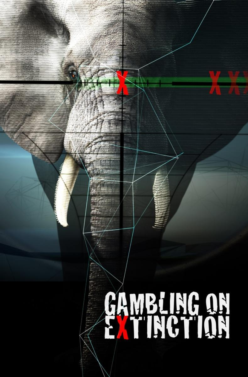 Gambling on extinction roulette strategy 2 dozens