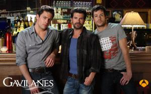 Gavilanes (Serie de TV)