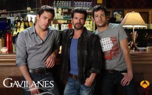 Gavilanes (TV Series)