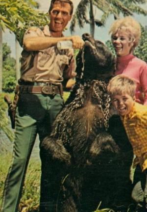 Mi oso y yo (Serie de TV)