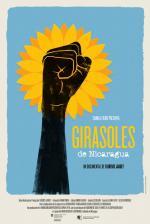 Girasoles de Nicaragua