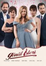 Gönül Isleri (Serie de TV)
