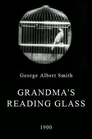 Grandma's Reading Glass (S)