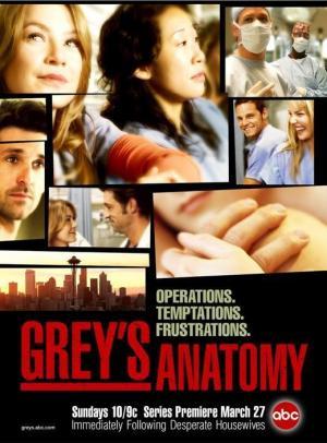 Anatomía según Grey (Serie de TV)