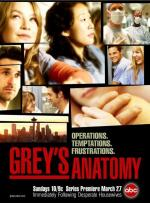 Grey's Anatomy (Serie de TV)