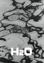 H2O (C)