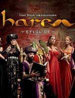 Harem (Serie de TV)