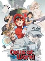 Cells at Work! (TV Series)