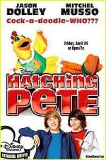 Hatching Pete (TV)