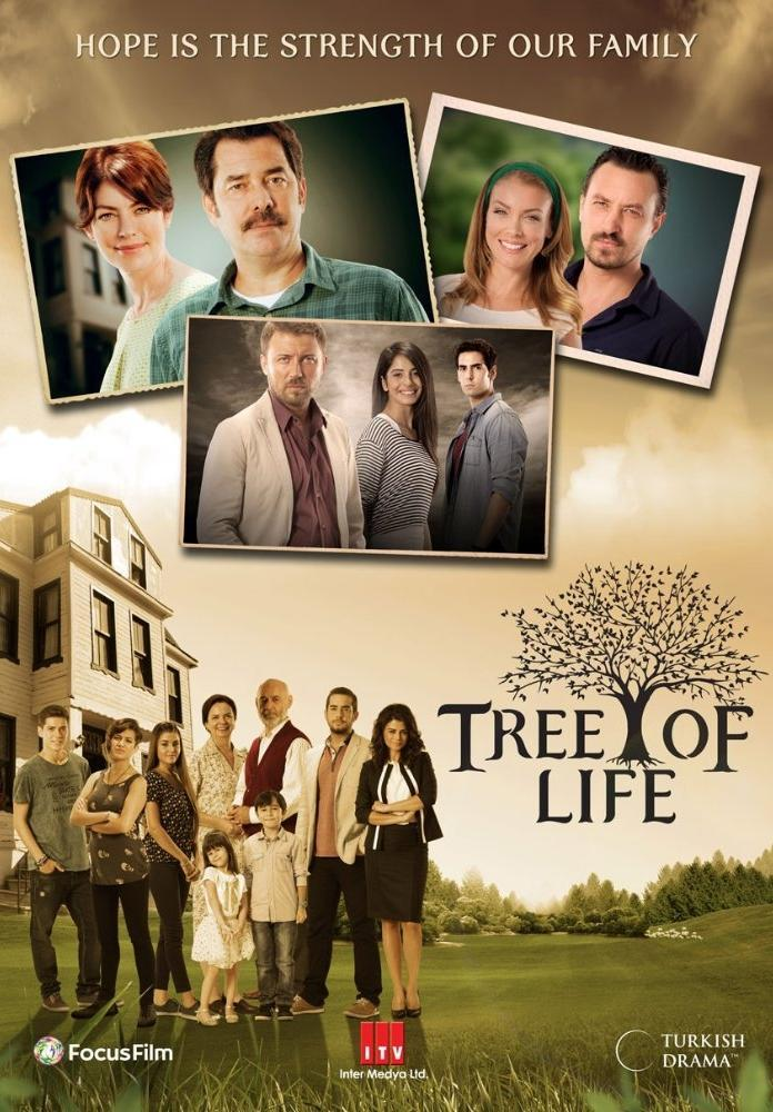 Tree of Life (TV Series) (2014) - FilmAffinity