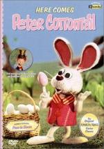 Here Comes Peter Cottontail (TV)