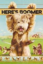 Aquí está Boomer (Serie de TV)